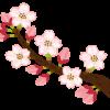 桜イラスト